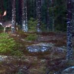 Fin hjort i brunst